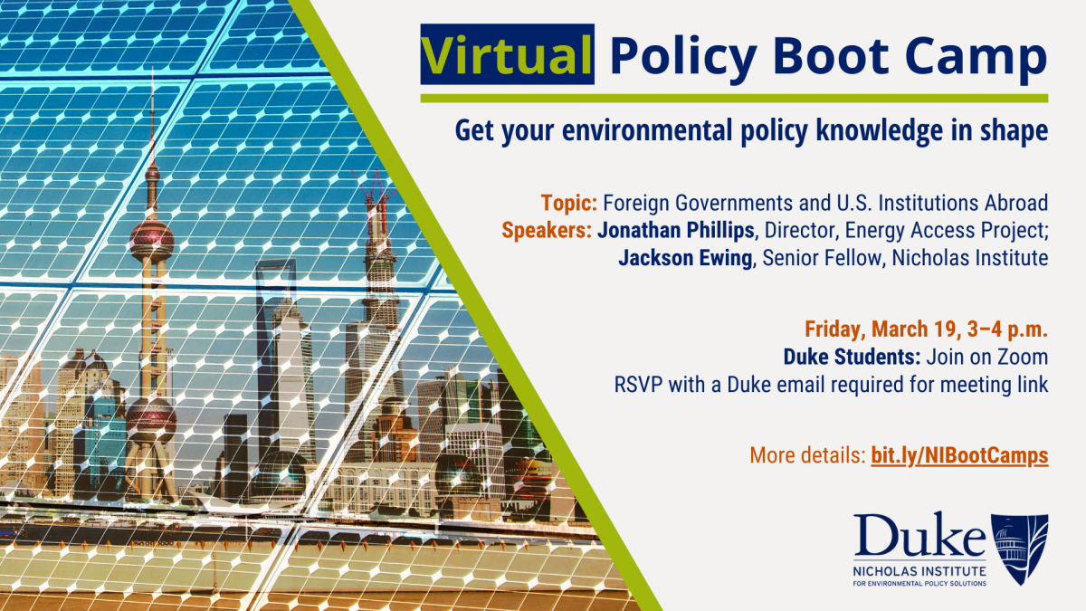 Virtual Policy Boot Camp: Foreign Governments and U.S. Institutions Abroad